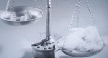 Le juge d'instance et la médiation professionnelle