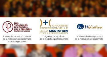Réunion des médiateurs professionnels du Grand Sud Ouest 11 janvier 2013