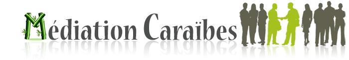 logo_bas-de-page1