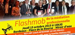 Controverse de Bordeaux sur la médiation