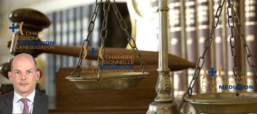 Via m diation la m diation professionnelle et le divorce - Chambre professionnelle de la mediation et de la negociation ...
