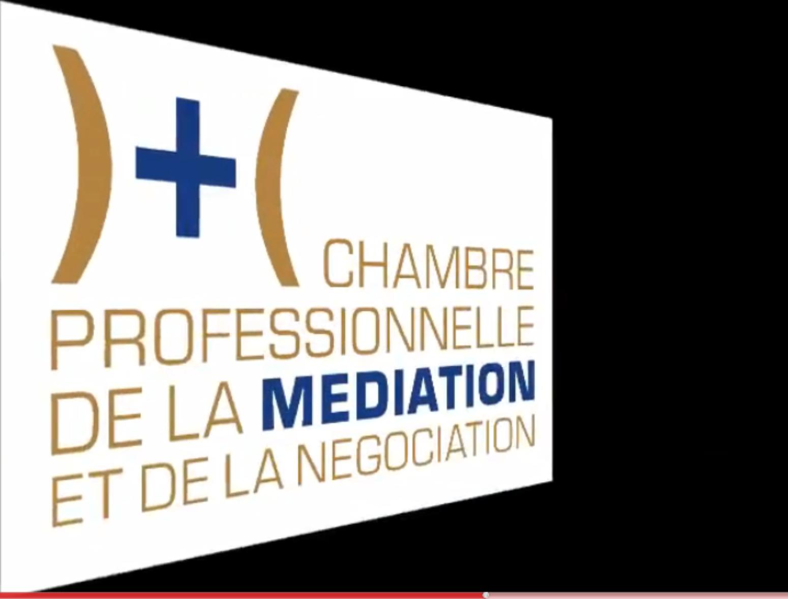 Un conseil national de la m diation et de la conciliation - Chambre professionnelle de la mediation et de la negociation ...
