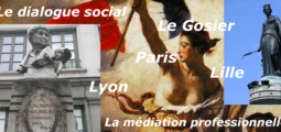 Dialogue Social : Lyon, Le Gosier, Lille, Fort-de-France, Paris avec les médiateurs professionnels